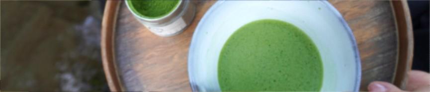 comprar, compra, matcha, té, japonés, verde, envío, entrega, organico